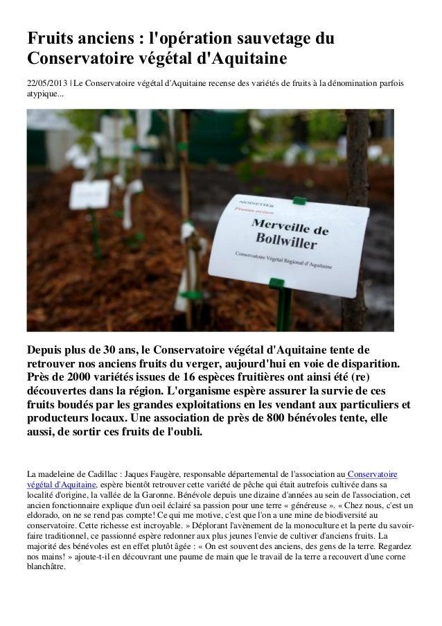Fruits anciens : lopération sauvetage duConservatoire végétal dAquitaine22/05/2013 | Le Conservatoire végétal dAquitaine r...