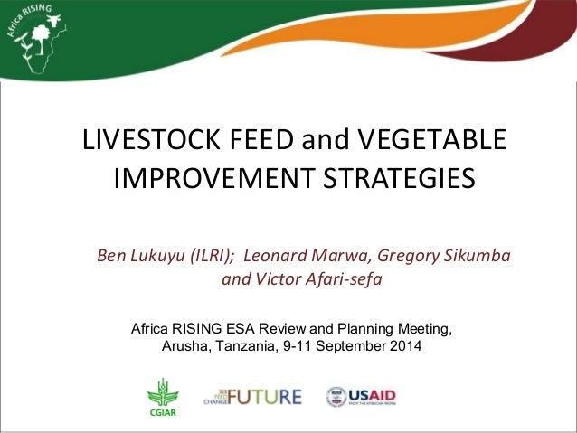 LIVESTOCK FEED and VEGETABLE  IMPROVEMENT STRATEGIES  Ben Lukuyu (ILRI); Leonard Marwa, Gregory Sikumba  and Victor Afari-...