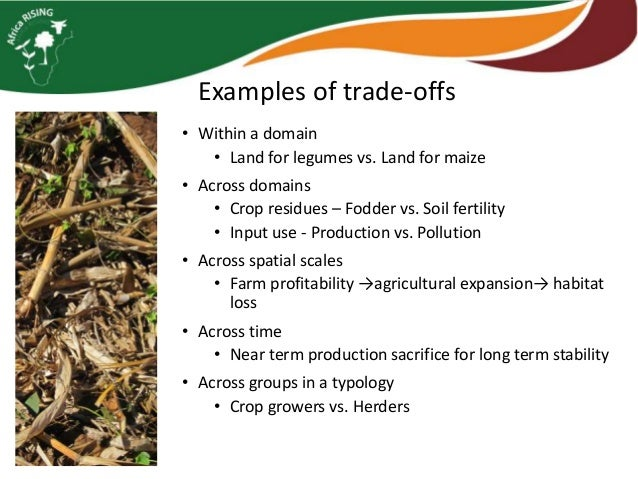 What is to trade-off.
