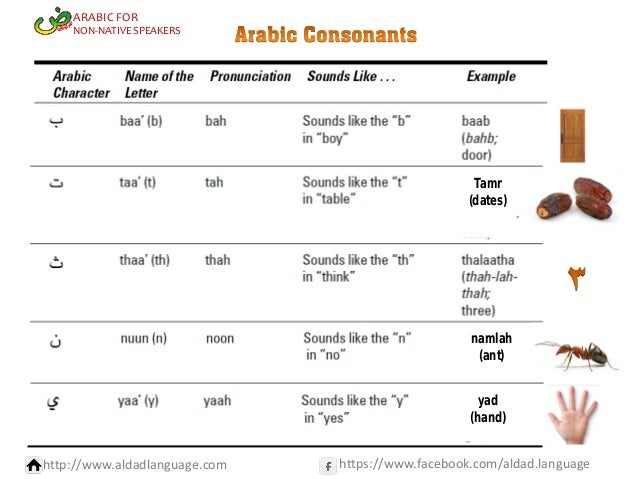 ARABIC FOR  NON-NATIVE SPEAKERS  Tamr (dates)  namlah (ant) yad (hand) http://www.aldadlanguage.com  https://www.facebook....