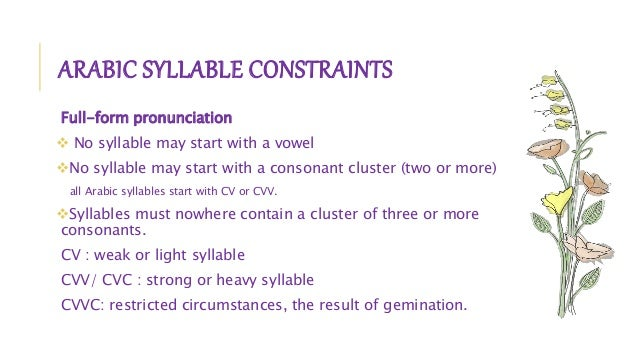 syllable structure and cluster Chapter-ii syllable structure  ccccvc no initial consonant cluster exceeding three consonant sounds is available in the monosyllabic structure ol.
