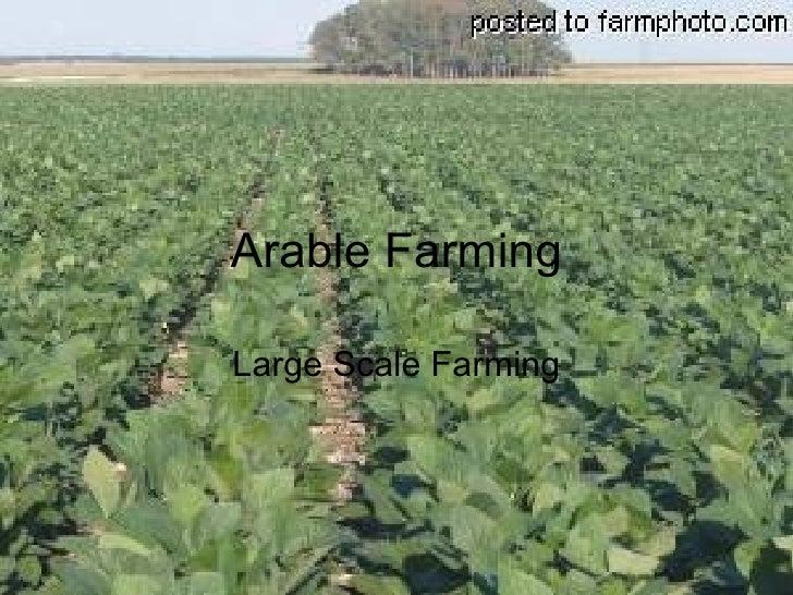 Arable Farming Large Scale Farming