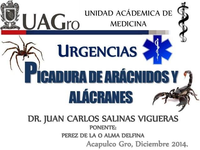 UNIDAD ACÁDEMICA DE MEDICINA URGENCIAS DR. JUAN CARLOS SALINAS VIGUERAS Acapulco Gro, Diciembre 2014. PONENTE: PEREZ DE LA...
