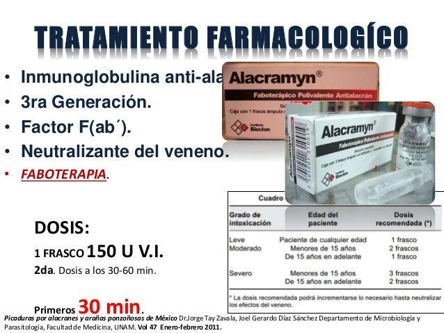 TRATAMIENTO FARMACOLOGÍCO • Inmunoglobulina anti-alacrán. • 3ra Generación. • Factor F(ab´). • Neutralizante del veneno. •...
