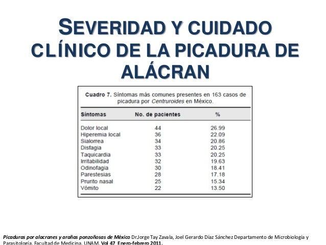 SEVERIDAD Y CUIDADO CLÍNICO DE LA PICADURA DE ALÁCRAN Picaduras por alacranes y arañas ponzoñosas de México Dr.Jorge Tay Z...