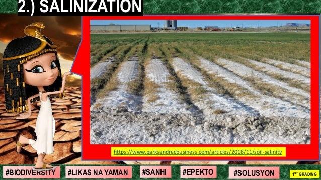 #SOLUSYON#EPEKTO#SANHI#BIODIVERSITY 1ST GRADING#LIKAS NA YAMAN 7 https://www.parksandrecbusiness.com/articles/2018/11/soil...