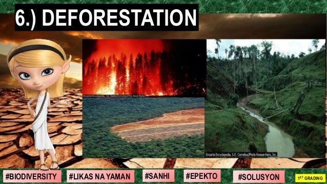 #SOLUSYON#EPEKTO#SANHI#BIODIVERSITY 1ST GRADING#LIKAS NA YAMAN 6.) DEFORESTATION