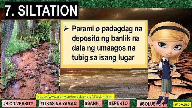 #SOLUSYON#EPEKTO#SANHI#BIODIVERSITY 1ST GRADING#LIKAS NA YAMAN 7. SILTATION 10 ➢ Parami o padagdag na deposito ng banlik n...