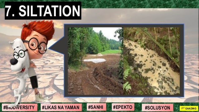 #SOLUSYON#EPEKTO#SANHI#BIODIVERSITY 1ST GRADING#LIKAS NA YAMAN 7. SILTATION 10