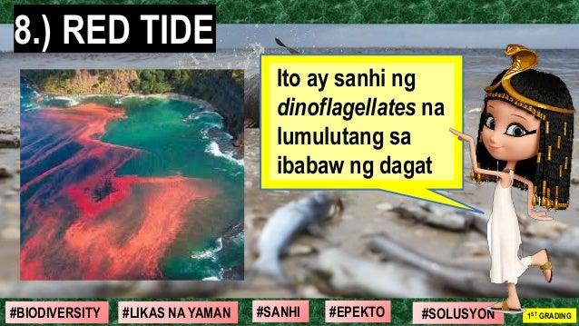 #SOLUSYON#EPEKTO#SANHI#BIODIVERSITY 1ST GRADING#LIKAS NA YAMAN 8.) RED TIDE Ito ay sanhi ng dinoflagellates na lumulutang ...