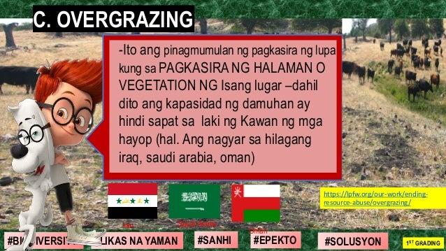 #SOLUSYON#EPEKTO#SANHI#BIODIVERSITY 1ST GRADING#LIKAS NA YAMAN 21 C. OVERGRAZING -Ito ang pinagmumulan ng pagkasira ng lup...