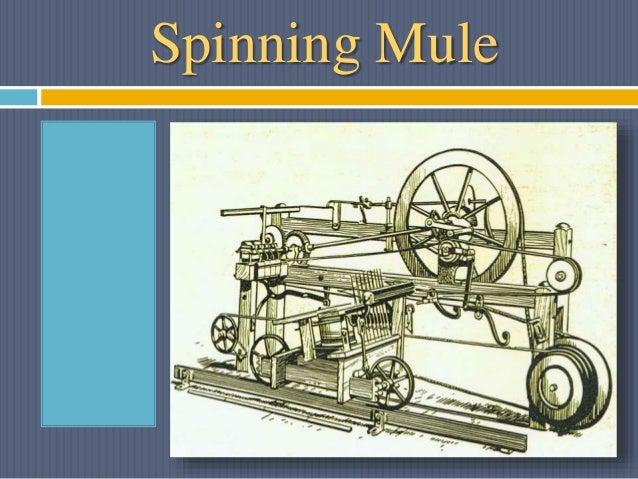 Spinning Mule