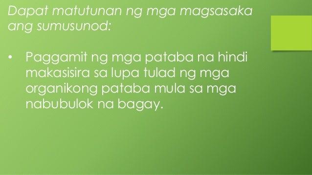 Ano ang dating pambansang ibon ng pilipinas 7