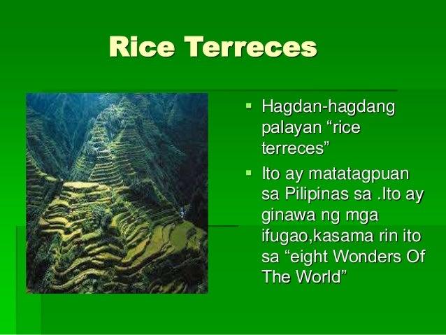 Hagdan Hagdang Palayan Descriptive Essay - image 5