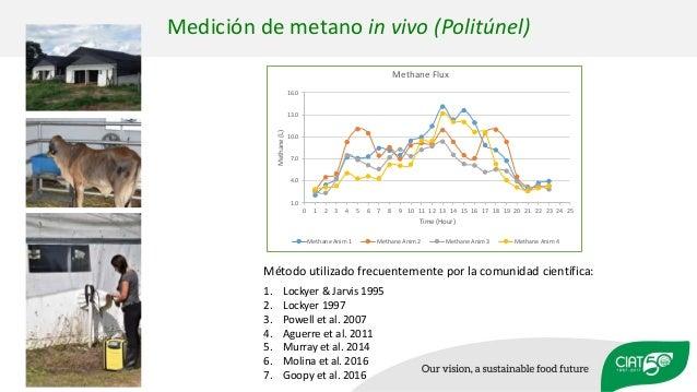 Medición de metano in vivo (Politúnel) 1. Lockyer & Jarvis 1995 2. Lockyer 1997 3. Powell et al. 2007 4. Aguerre et al. 20...