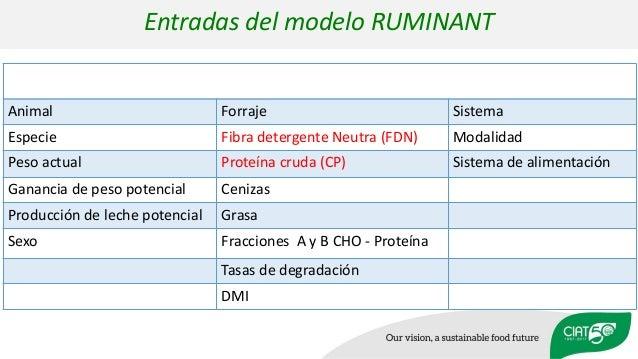 Animal Forraje Sistema Especie Fibra detergente Neutra (FDN) Modalidad Peso actual Proteína cruda (CP) Sistema de alimenta...