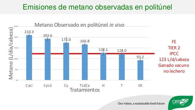 FE TIER 2 IPCC 123 L/d/cabeza Ganado vacuno no lechero Emisiones de metano observadas en politúnel 210.3 193.6 175.0 166.8...