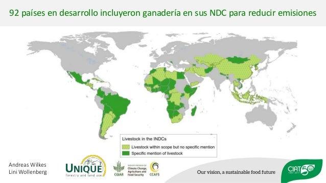 92 países en desarrollo incluyeron ganadería en sus NDC para reducir emisiones Andreas Wilkes Lini Wollenberg