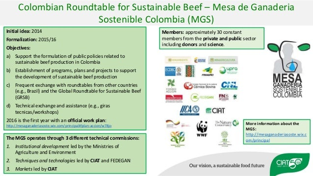 Initial idea: 2014 Formalization: 2015/16 Objectives: a) Support the formulation of public policies related to sustainable...