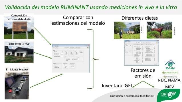 Validación del modelo RUMINANT usando mediciones in vivo e in vitro Diferentes dietas Factores de emisión N.Palmer Inventa...