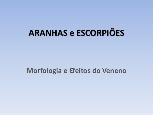 ARANHAS e ESCORPIÕES Morfologia e Efeitos do Veneno