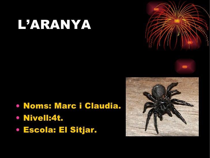 <ul><li>Noms: Marc i Claudia. </li></ul><ul><li>Nivell:4t. </li></ul><ul><li>Escola: El Sitjar. </li></ul>L'ARANYA