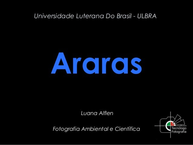 Universidade Luterana Do Brasil - ULBRA  Araras Luana Alflen Fotografia Ambiental e Científica