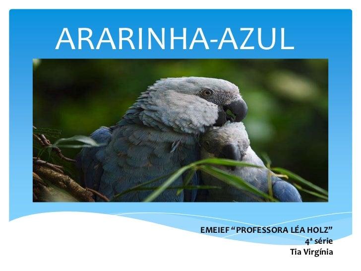 """ARARINHA-AZUL<br />EMEIEF """"PROFESSORA LÉA HOLZ""""<br />4ª série<br />Tia Virgínia<br />"""