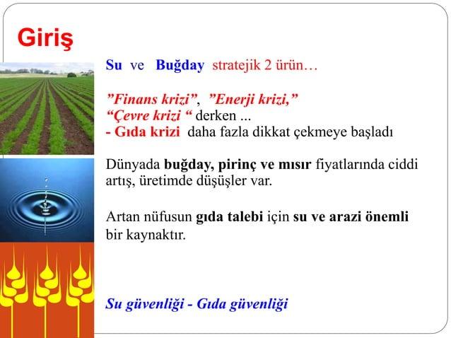 """Giriş Su ve Buğday stratejik 2 ürün… """"Finans krizi"""", """"Enerji krizi,"""" """"Çevre krizi """" derken ... - Gıda krizi daha fazla dik..."""