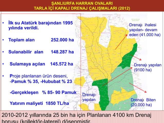 Drenajı yapılan (9100 ha) Drenajı yapılan Drenajı Biten (20.000 ha) Drenajı ihalesi yapılan- devam eden (41.000 ha) ŞANLIU...