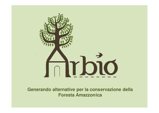 Generando alternative per la conservazione dellaForesta Amazzonica