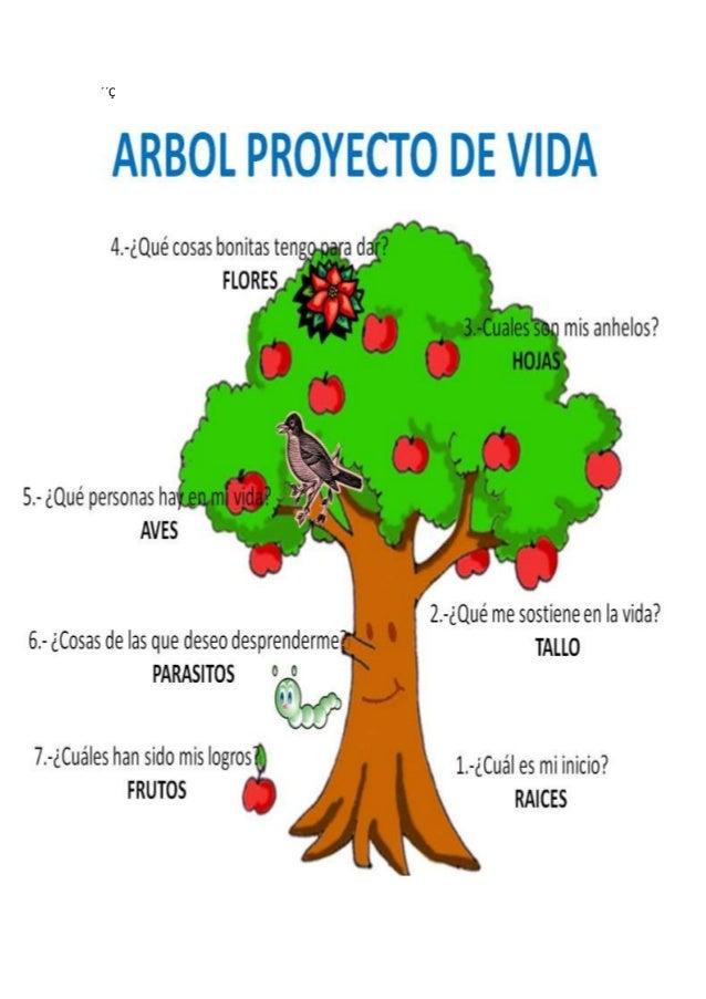 Rbol proyecto de vida for Cuales son las partes de un arbol