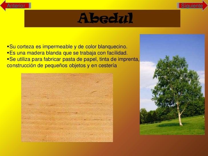 Arboles Slide 3