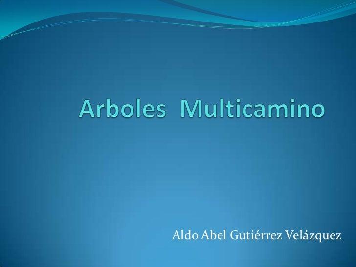 Arboles  Multicamino <br />Aldo Abel Gutiérrez Velázquez<br />