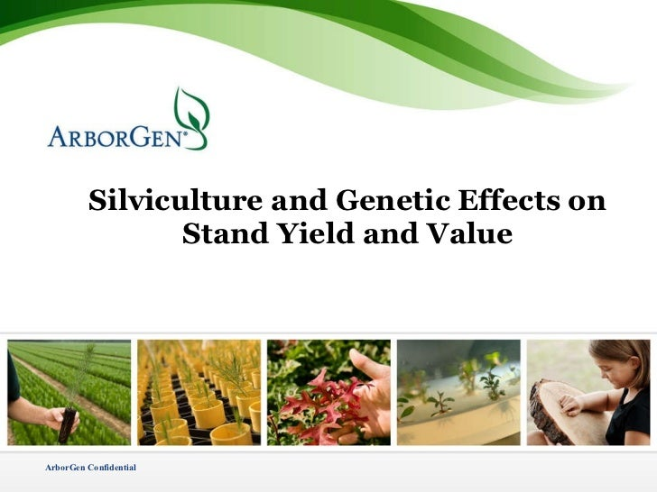 Silviculture and Genetic Effects on Stand Yield and Value