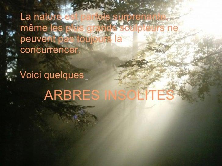 ARBRES INSOLITES <ul><li>La nature est parfois surprenante, même les plus grands sculpteurs ne peuvent pas toujours la con...