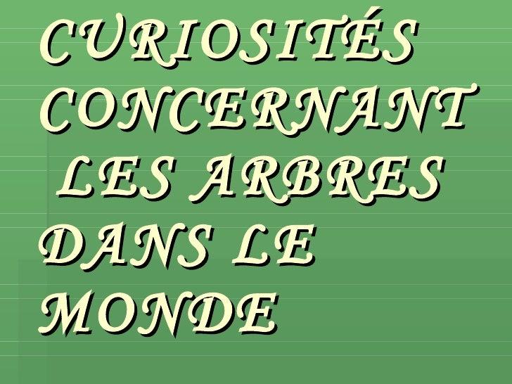 CURIOSITÉS CONCERNANT   LES ARBRES DANS LE MONDE
