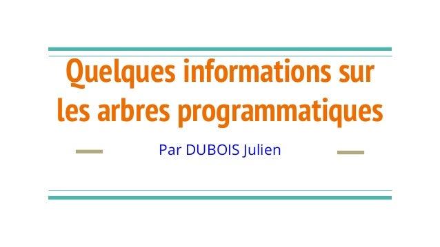 Quelques informations sur les arbres programmatiques Par DUBOIS Julien