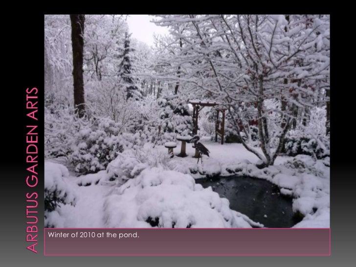 Arbutus garden arts<br />Winter of 2010 at the pond.<br />
