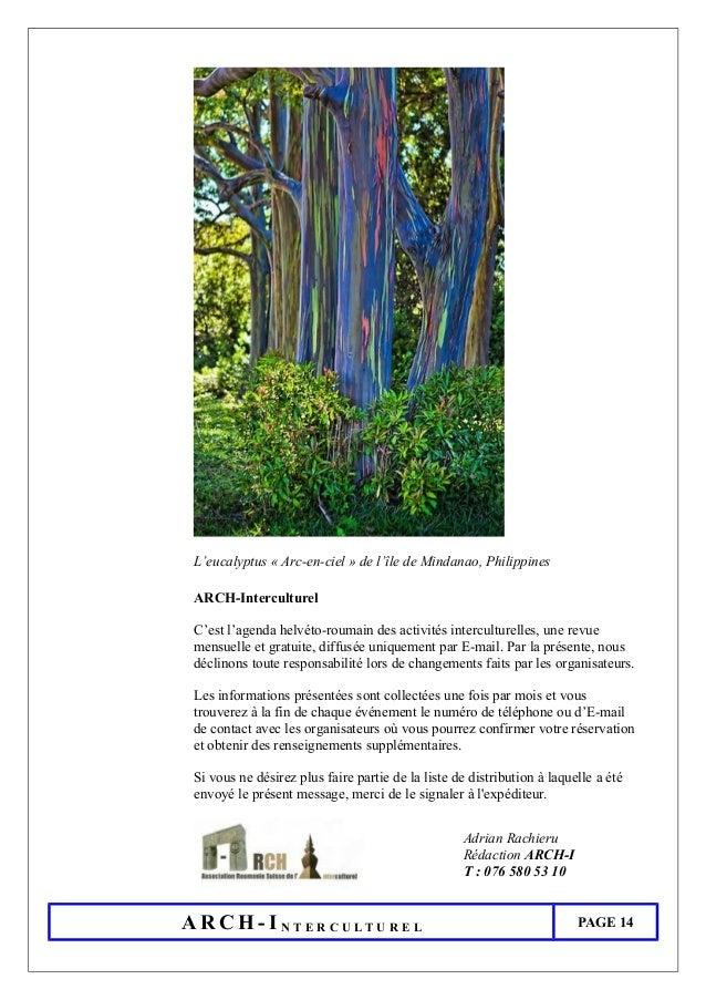 L'eucalyptus « Arc-en-ciel » de l'île de Mindanao, Philippines ARCH-Interculturel C'est l'agenda helvéto-roumain des activ...
