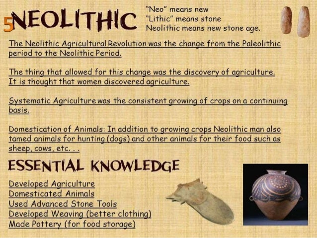 neolithic age in india pdf
