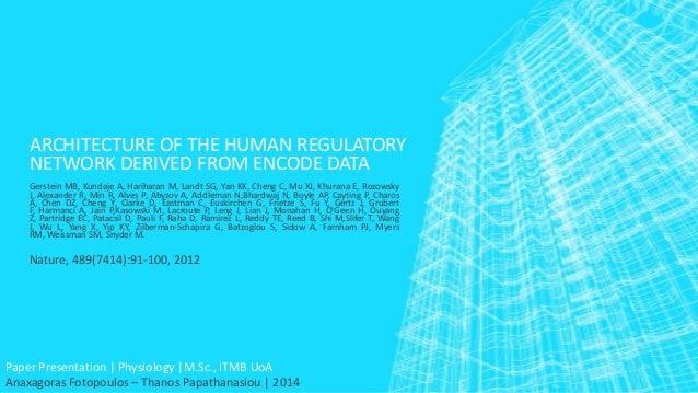 ARCHITECTURE OF THE HUMAN REGULATORY NETWORK DERIVED FROM ENCODE DATA Gerstein MB, Kundaje A, Hariharan M, Landt SG, Yan K...