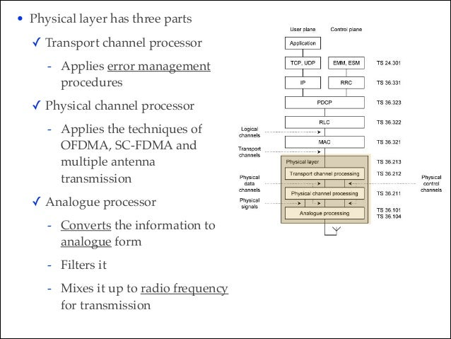 • Physical layer has three parts! ✓ Transport channel processor ! - Applies error management procedures! ✓ Physical channe...