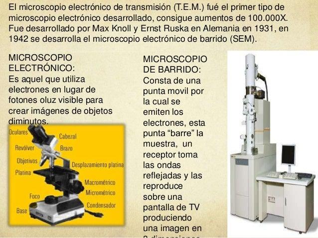 El Microscopio 638 Cb Electronico De Barrido