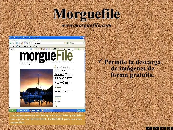 Morguefile www.morguefile.com <ul><li>Permite la descarga de imágenes de forma gratuita. </li></ul>La   página muestra un ...