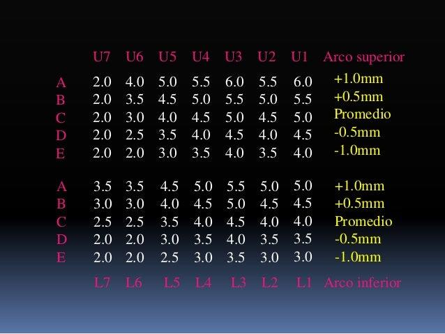 Fase II Movimientos mayores individuales (sagital, transversal y vertical)  Coordinación  Simetría de anchura de arcos o...