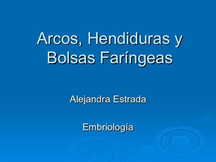 Arcos, Hendiduras y Bolsas Faríngeas Alejandra Estrada Embriología