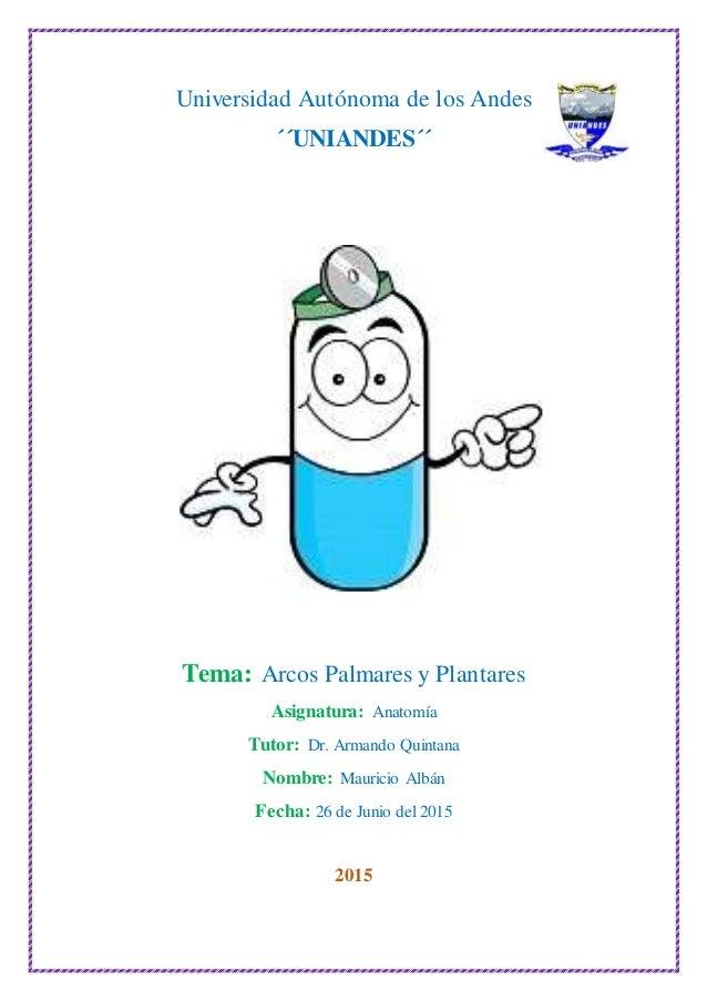 Universidad Autónoma de los Andes ´´UNIANDES´´ Tema: Arcos Palmares y Plantares Asignatura: Anatomía Tutor: Dr. Armando Qu...