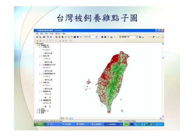 台灣被飼養雞點子圖