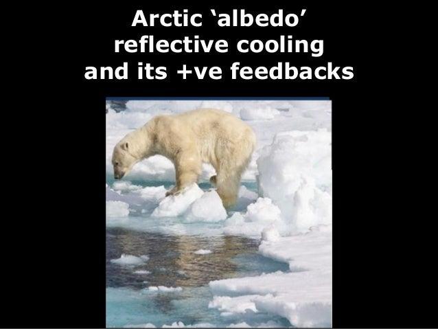 Arctic 'albedo'  reflective coolingand its +ve feedbacks